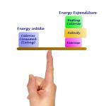 The energy balance explained