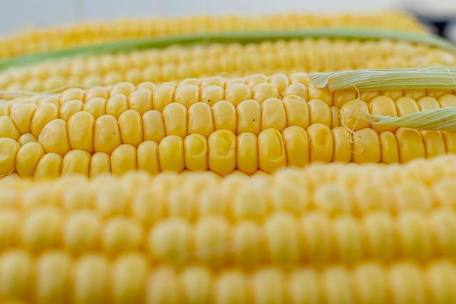 gluten-free corn