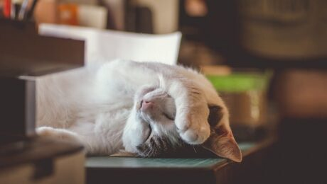 10 reasons why you're always exhausted